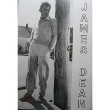 JAMES DEAN LEANING POSTER (67x98cm)  PICTURE PRINT NEW ART