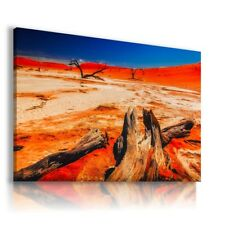 AFRICA NAMIBIA DESERT Wild Life Canvas Wall Art Picture AN235