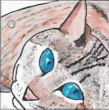 """Blue Eyed GATTO TIGRATO Argento-Originale Acrilico su tela 20X20CM 8""""X8"""""""
