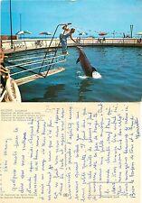 Riccione – Lungomare – Aquarium dei delfini unico in Italia  (I-L 30)
