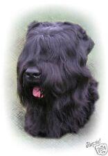 Russian Black Terrier A6 Blank Card By Starprint