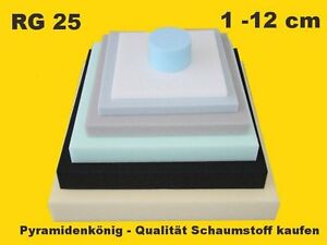 Schaumstoff Schaumstoffe Platte Matte Zuschnitt Tafel Polster RG 25 nach Wahl