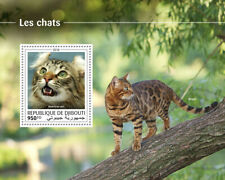 Djibouti Cats Stamps 2018 MNH American Curl Bengal Cat Domestic Animals 1v S/S
