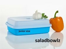 TUPPERWARE New JR SEASON-SERVE MARINADE CONTAINER in Blue Junior Size! fREEsHIP!