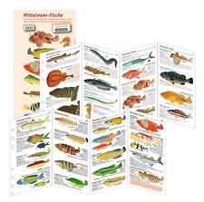 sub-base Logbuch Einlagen Mittelmeer Fische SSI Lochung NEU !!!
