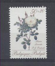 FLEUR ROSES Belgique 1 val de 1990 ** FLOWER BLUME FIORE