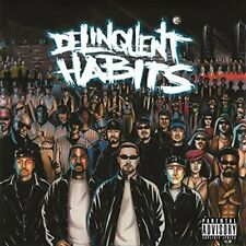 Delinquent habits 2 LP Music on Vinyl