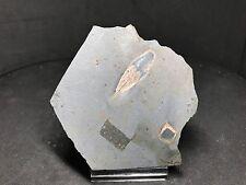 QUIASTOLITA - Chiastolite - Mirabel, Caceres - SPAIN MINERAL MINERALIEN 8x7x2
