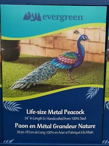 Stunning Large Metal Hand Painted Vibrant Fan Tail Peacock Garden Patio Ornament