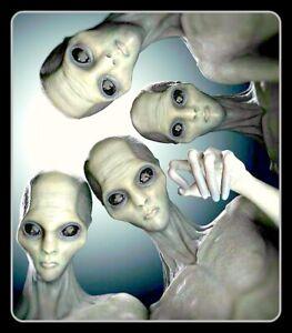 "4.25"" Creepy Gray Aliens vinyl sticker. Alien, UFO, Area 51 decal for laptop."