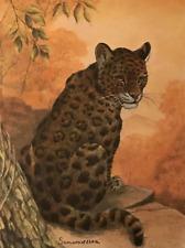 Vintage Pensive Jaguar Samaraseera England Solomon Whitehead Lithograph #S272