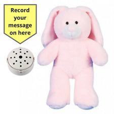 Record ein 20 Sec Personalisierte Nachricht in Pink Bunny Geschenk Teddybär