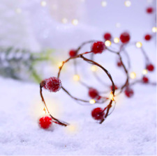 Christmas Shimmer String Lights Frosted Cranberries 10ft w/Timer