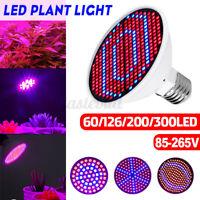 E27 60/126/200/300LED Growing Lamp Indoor Plant Grow Light Hydroponic Flower Veg