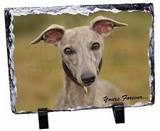 Whippet Puppy 'Yours Forever' Photo Slate Christmas Gift Ornament, AD-WH92ySL