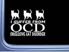 OCD Cat Disorder M264 6 inch Sticker crazy lady kitten litter box Decal