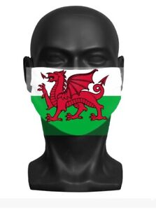 Adult Face Mask (WALES)
