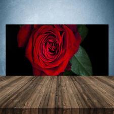 Crédence de cuisine en verre Panneau 140x70 Floral Rose