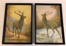 Vintage Stag Print Pictures