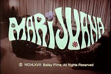 MARIJUANA PROPAGANDA FILMS COMPLETE 2 DVD COLLECTION