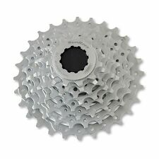 SUN RACE Pacco pignoni 8v 11-28