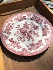 ROYAL STAFFORD ASIATIC PHEASANT TOILE RED DINNER PLATE Excellent condition