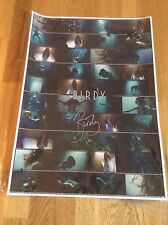 Birdy - Wild Horses - Exclusive Signed Art Print Poster