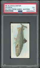 SALMON 1888 N8 Allen & Ginter 50 Fish From American Waters PSA 5 EX