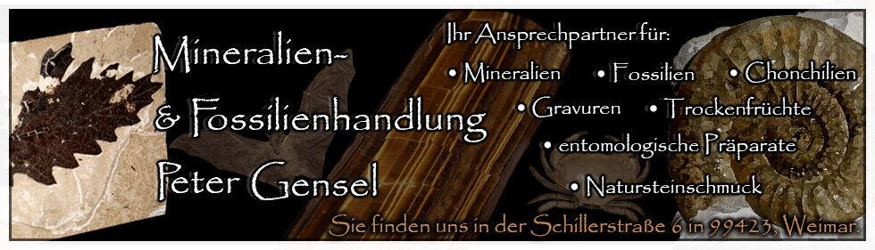 PG Weimar Naturalien OnlineShop