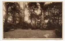 THE DUELLING GROUND , KENWOOD , HAMPSTEAD