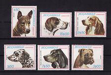tcb/   Mozambique  série de 6  chiens     num:   719/24  **