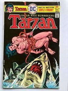 Tarzan #243 Comic 1975 - DC Comics - Lord of the Jungle - Edgar Rice Burroughs