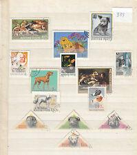 Hunde (339) nur aus Ungarn Hütehunde Jagdhunde
