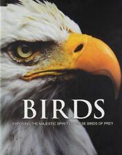 Spirit of Birds of Prey,