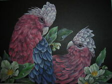 Galah Exotic birds Cockatoo wildlife Floral painting