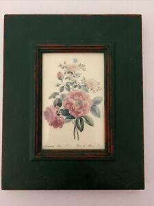 Vintage Wood Framed French Botanical Damask Rose, N.1  Rose de Meux, N.2 Green