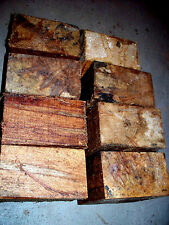 EIGHT (8) AMBROSIA MAPLE BOWL BLANKS LATHE TURNING BLOCKS WOOD 5 X 5 X 3""