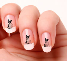 20 Nail Art Stickers Transfers Decals #654 - French Bull Dog Just peel & stick