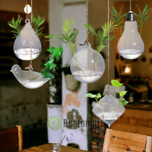 5Sets Hanging Glass Terrarium Clear Water Air Plant Containers DIY Flower Holder