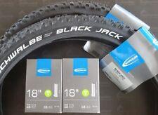 2x MTB Schwalbe Black Jack Reifen 18x1.90  47-355 2 AV Schläuche