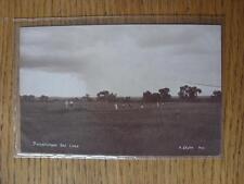 1900's-50's GOLF foto cartolina: in tutto il mondo-potchefstroom GOLF LINKS [non po