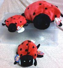 Ty Beanies Ladybug Lucky (tag errors) & Maiden (2.0 - 2 tags), Buddy Lucky, Mwmt