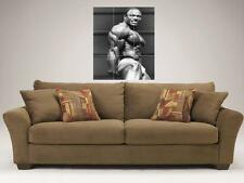 """LEE HANEY MOSAIC 35""""X25"""" INCH WALL POSTER BODYBUILDING"""
