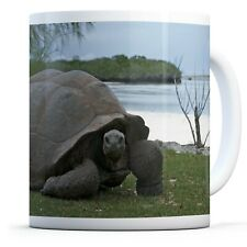 Aldabra Giant Tortoise - Drinks Mug Cup Kitchen Birthday Office Fun Gift #12549