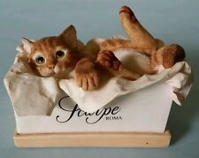 Scarpe roma cat shoe box figurine cute