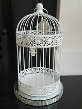 Package of 8 XL White Shabby Chic Birdcages Wedding Centre Piece Bird Cage