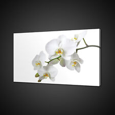 BEAUTIFUL WHITE ORCHID FLOWER MOUNTED CANVAS PRINT WALL ART PICTURE PHOTO