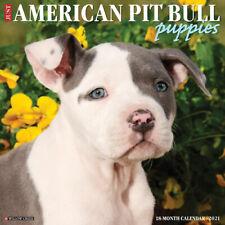 "Willow Creek Just American Pit Bull Terrier Puppies 2021 Wall Calendar 12""X12"""
