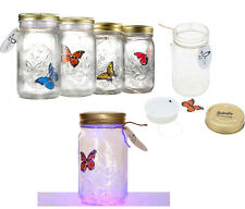 Butterfly In A Jar LED Lamp Electronic Butterfly In A Jar Children Present Gift