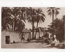 Une Route a Travers l'Oasis North Africa Vintage RP Postcard 090b